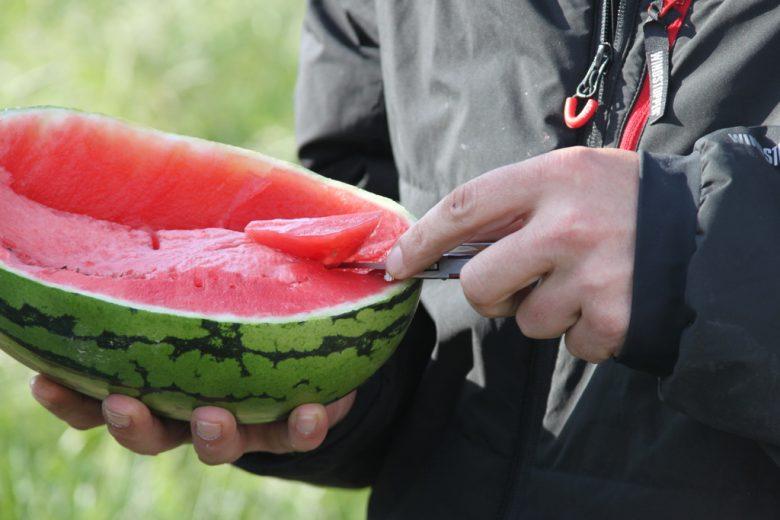 FPV Treffen mit Melone